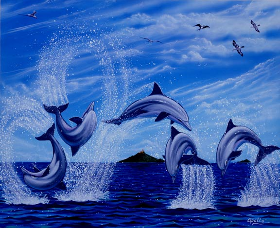 playtime with dolphins DOLPHIN ART and WHALE ART by APOLLO©