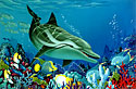 striped dolphin. Whale Art and Dolphin Art This painting of Dolphins is not a wyland please do not confuse his work with Apollo's Art.