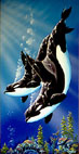 Whale Art and Dolphin Art  This painting of Whales is not a wyland please do not confuse his work with Apollo's Art.