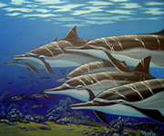 school of spinner dolphins. Whale Art and Dolphin Art This painting of Dolphins is not a wyland please do not confuse his work with Apollo's Art.