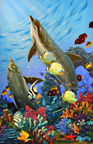 Dolphin Painting by Apollo ©  This painting of Dolphins is not a wyland please do not confuse his work with Apollo's Art