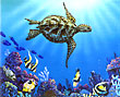 green sea turtle wisdom
